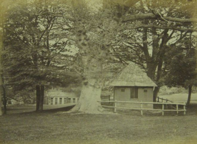 hut 1898