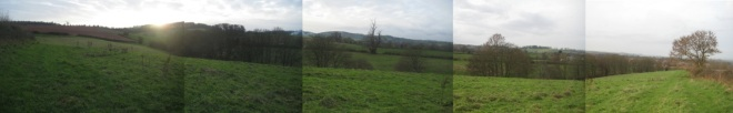 Panoramic view of Mill Wood looking south.