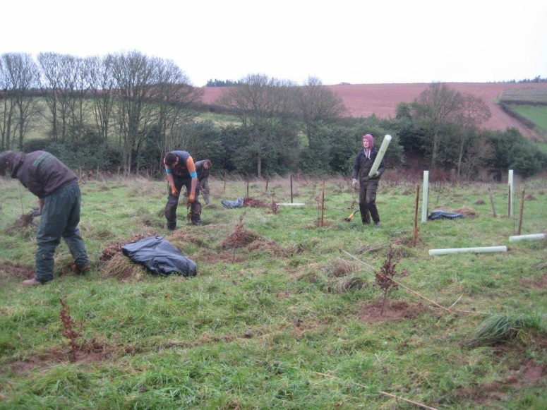 One by one the 4,423 trees are being planted, in addition to the few hundred that were recently planted for Edward Strachan's 50th birthday.