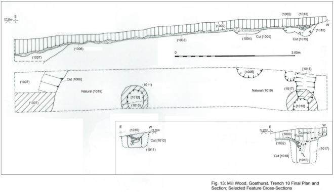 Diagram of the Druid's Hut trench.
