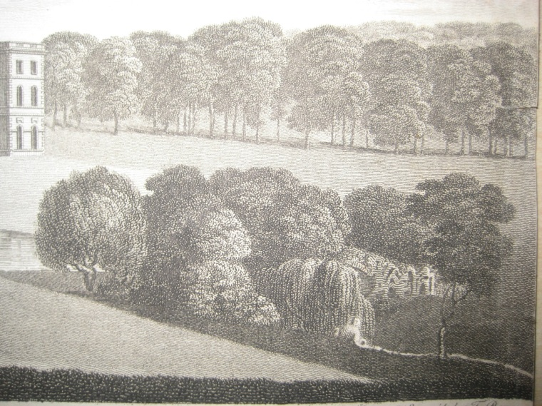 T. Bonner, etching published in Collinson's Somerset, 1781. Historic images of the Grotto at Halswell are very rare; this print provides the most detail.